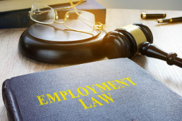 Employment Law book-tribunal in background