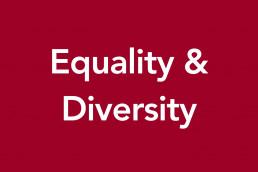 Equality Diversity image